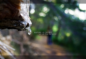nature-is-crying